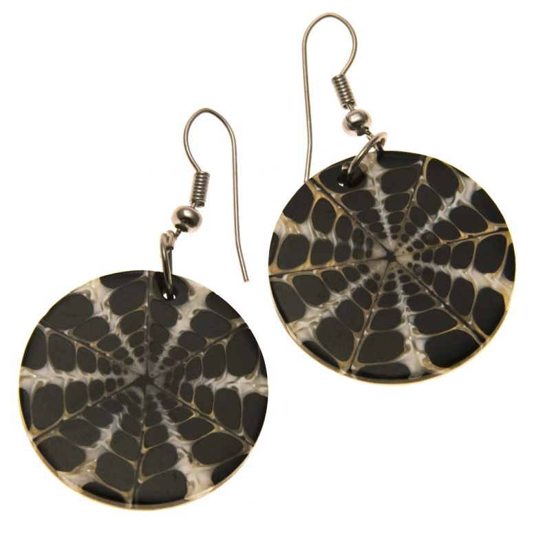 Earrings Shell Spider-Web