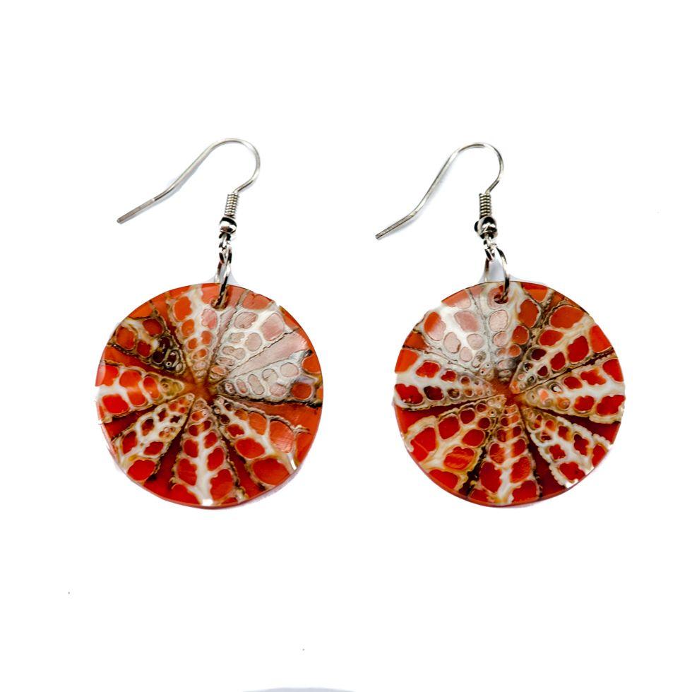 Shell earrings Autumn sun Indonesia