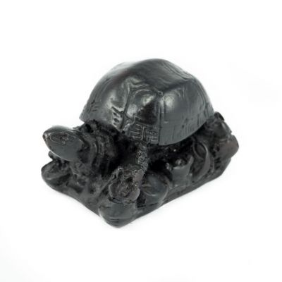 Resin statuette Little tortoise with a base