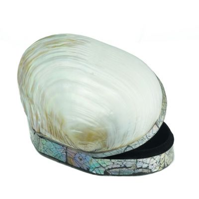 Shell box - large