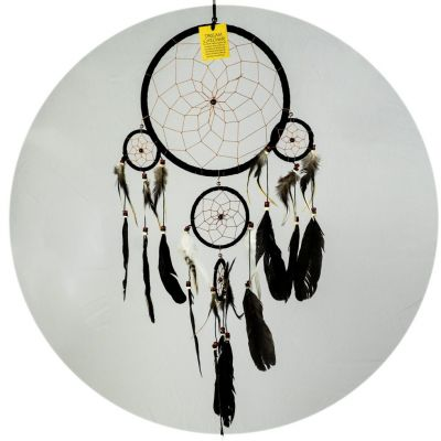 Dream catcher Raven