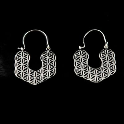 Earrings Hitiksha
