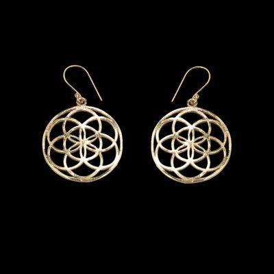 Brass earrings Taru